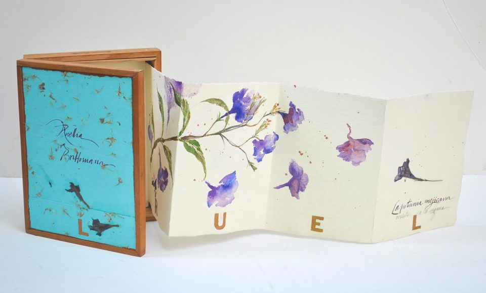 Artist Books by Lydia Rubio